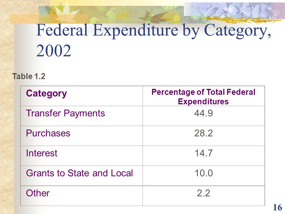 Federal Expenditure by Category, 2002