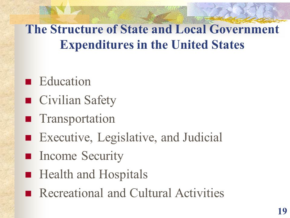The Structure of State and Local Government Expenditures in the United States