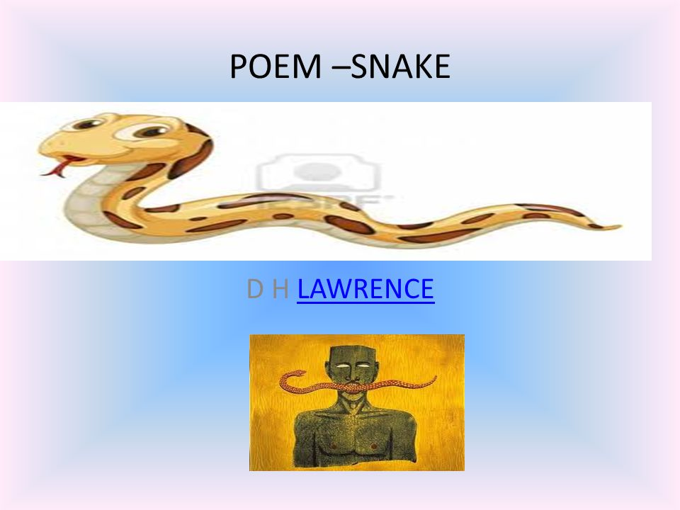 a paper on lawrences poem snake Expository essays term papers (paper 4605) on snake by dh lawrence: his poem snake was written while he was living in taormina, sicily in 1920.