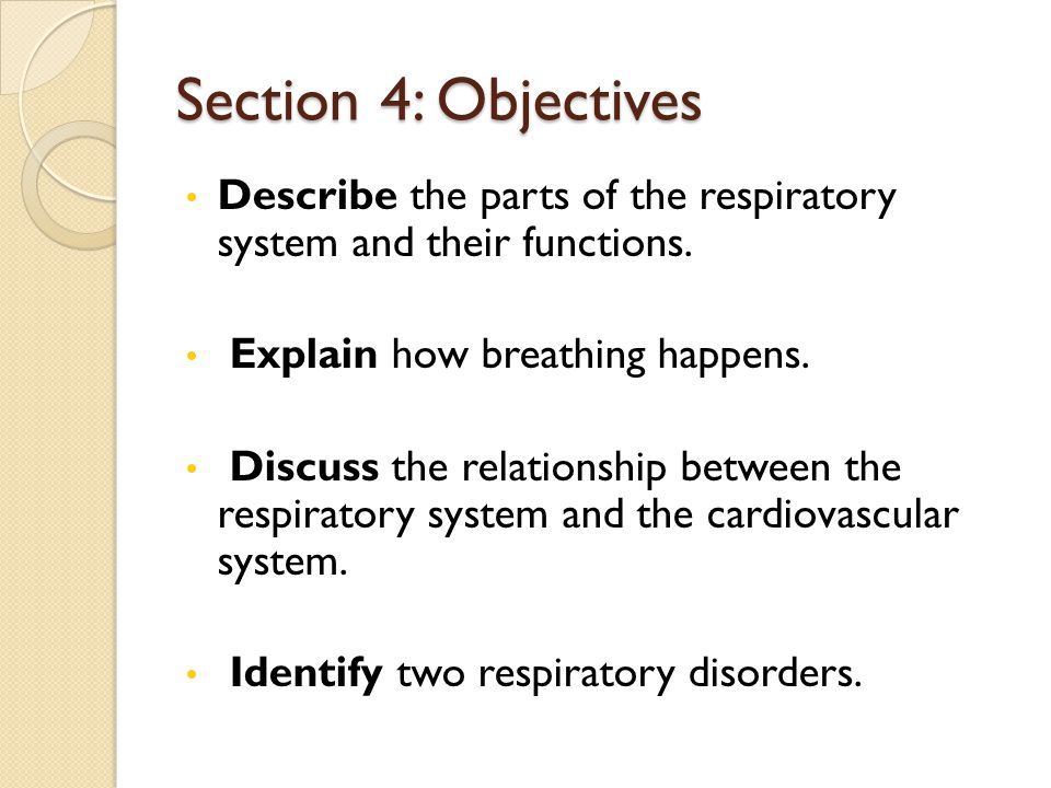 relationship between cardiovascular system and respiratory
