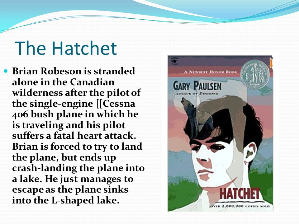 a focus on brian robeson as the main character in the story hatchet The novel begins with brian robeson, a thirteen-year-old boy from new york city next section character list previous section about hatchet buy study guide.