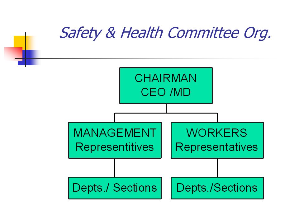 Safety & Health Committee Org.