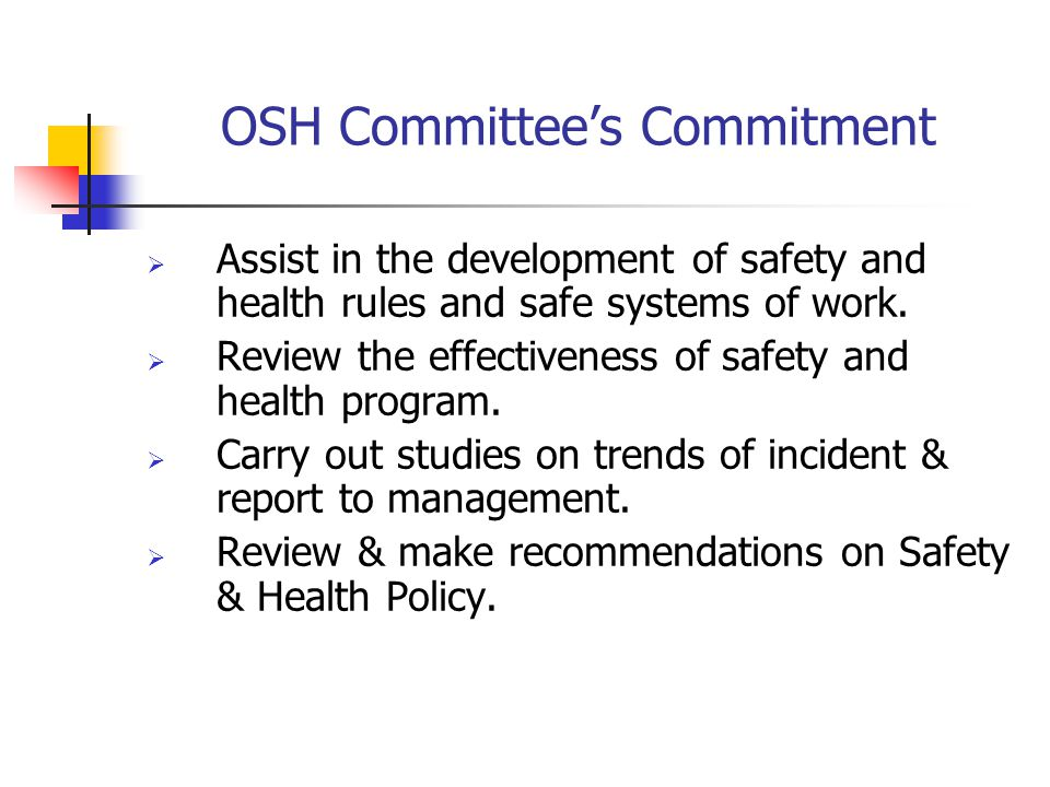 OSH Committee's Commitment
