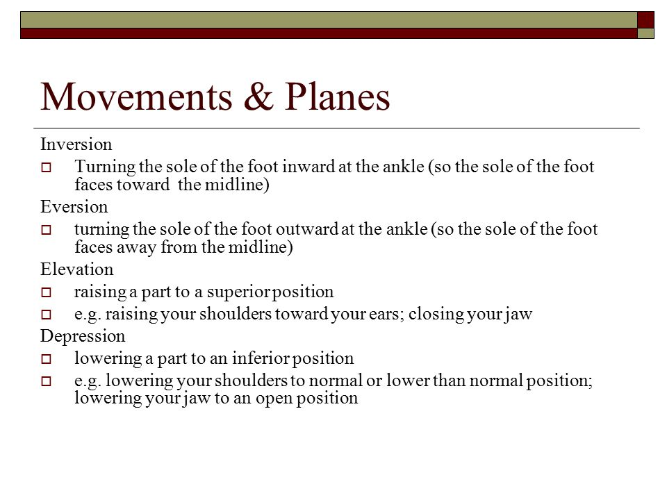 Movements & Planes Inversion