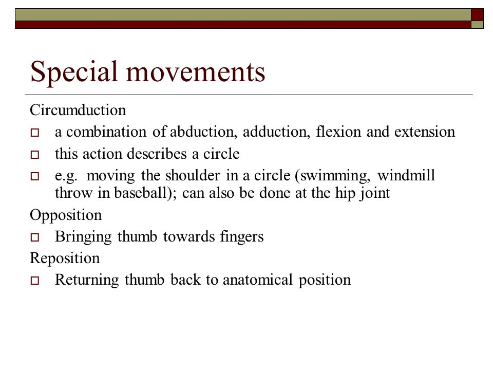 Special movements Circumduction