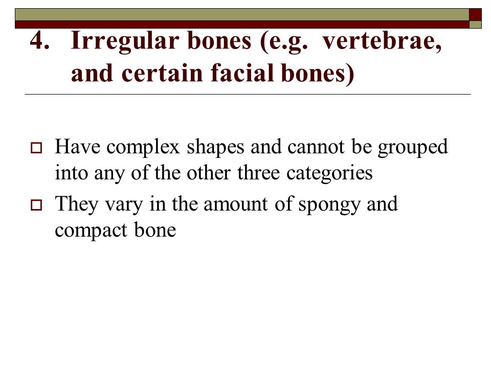 Irregular bones (e.g. vertebrae, and certain facial bones)