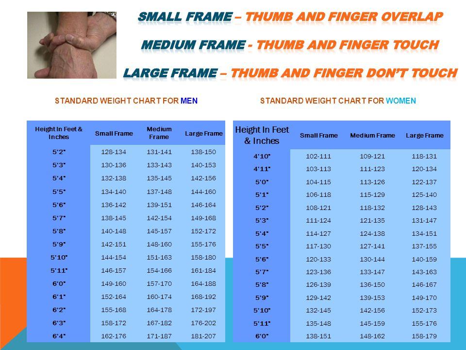Small Medium Large Frame - Page 6 - Frame Design & Reviews ✓