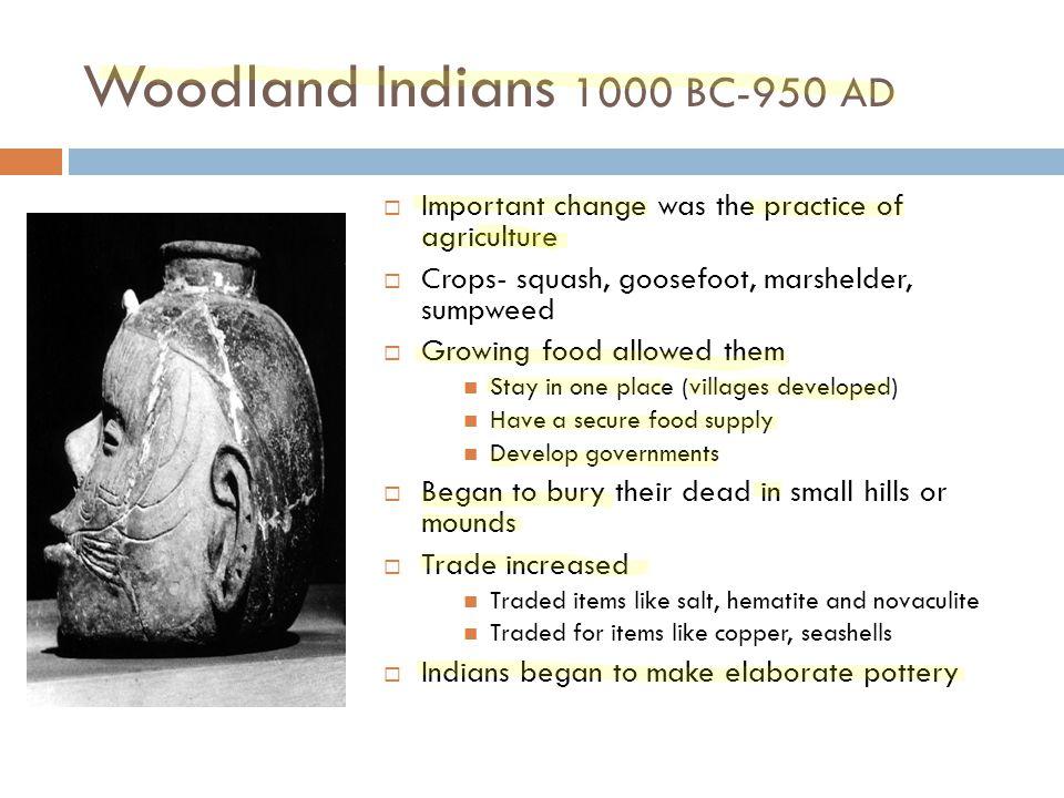 Indian Food Woodland Hills