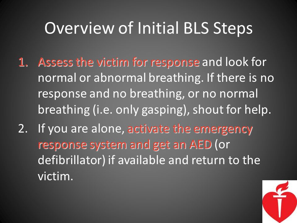 Overview of Initial BLS Steps