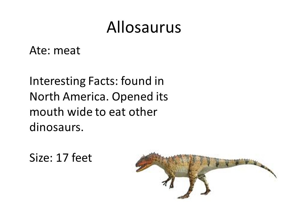 Dinosaur research ppt video online download for Interesting facts north america