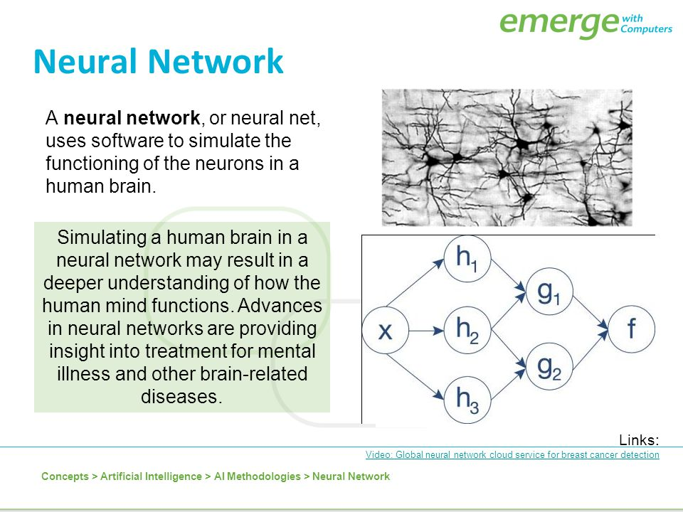 Neural Network A neural network, or neural net, uses software to simulate the functioning of the neurons in a human brain.