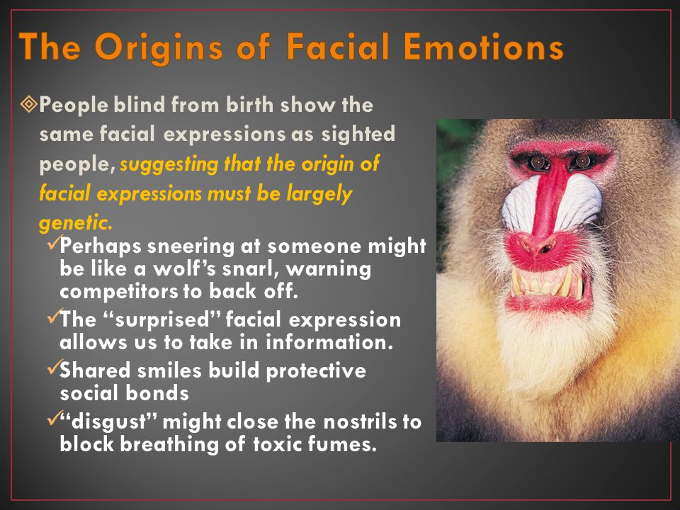 The Origins of Facial Emotions