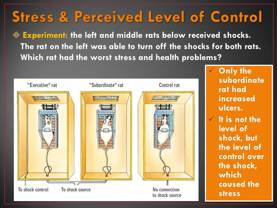 Stress & Perceived Level of Control