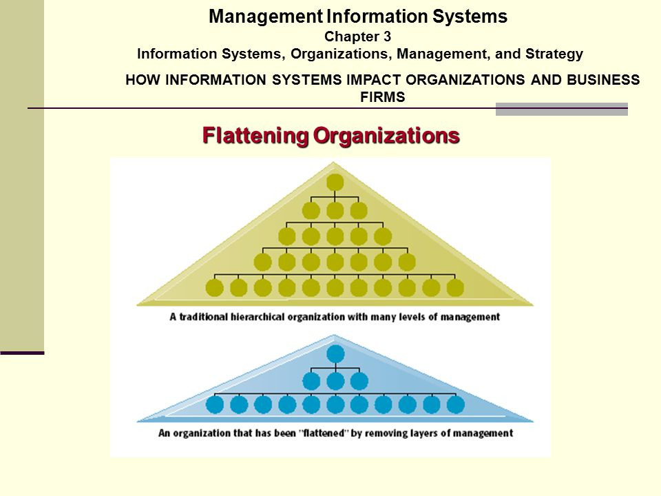 impact of management information system pdf