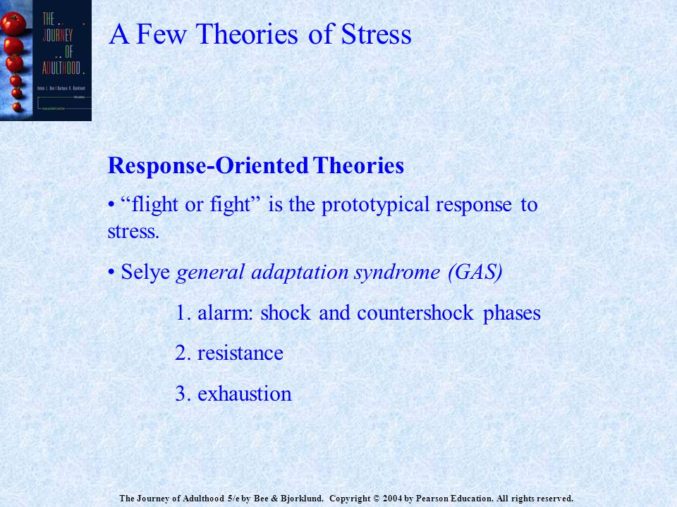 A Few Theories of Stress