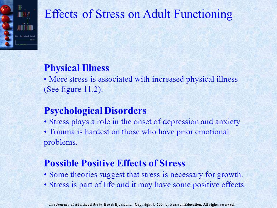 Effects of Stress on Adult Functioning