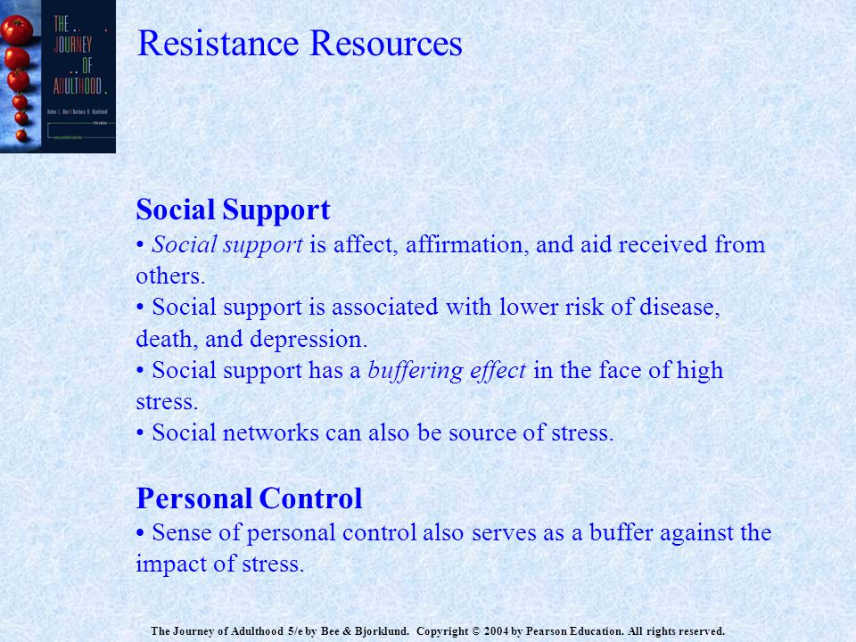 Resistance Resources Social Support Personal Control