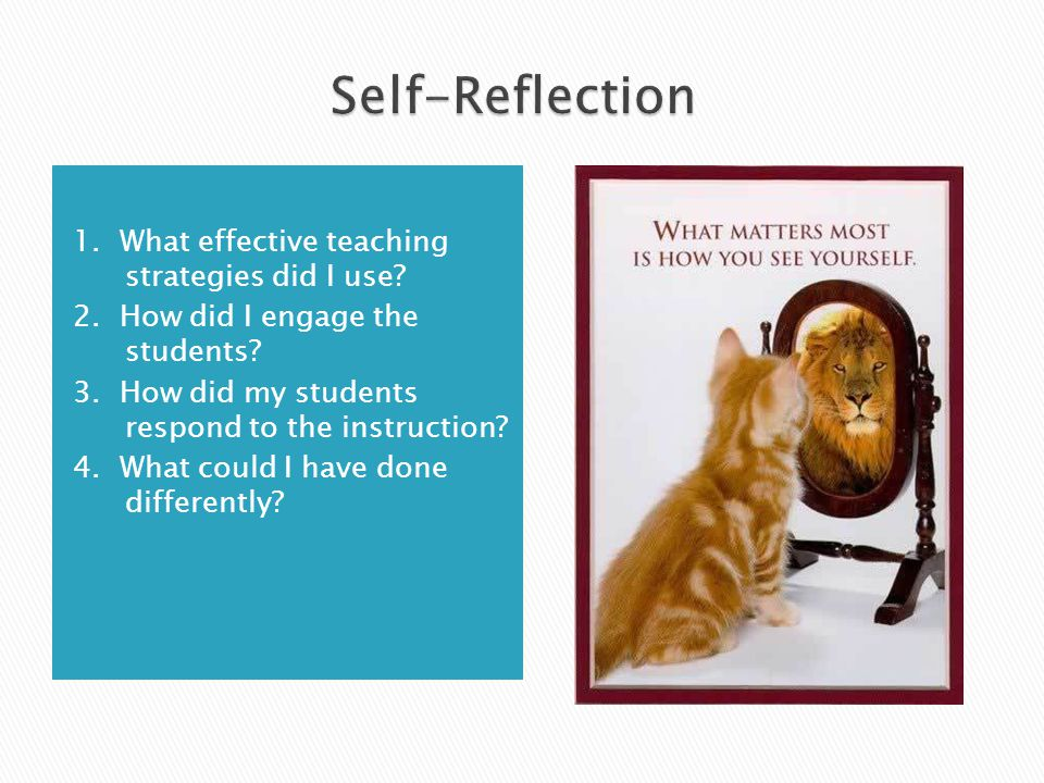 Self-Reflection 1. What effective teaching strategies did I use