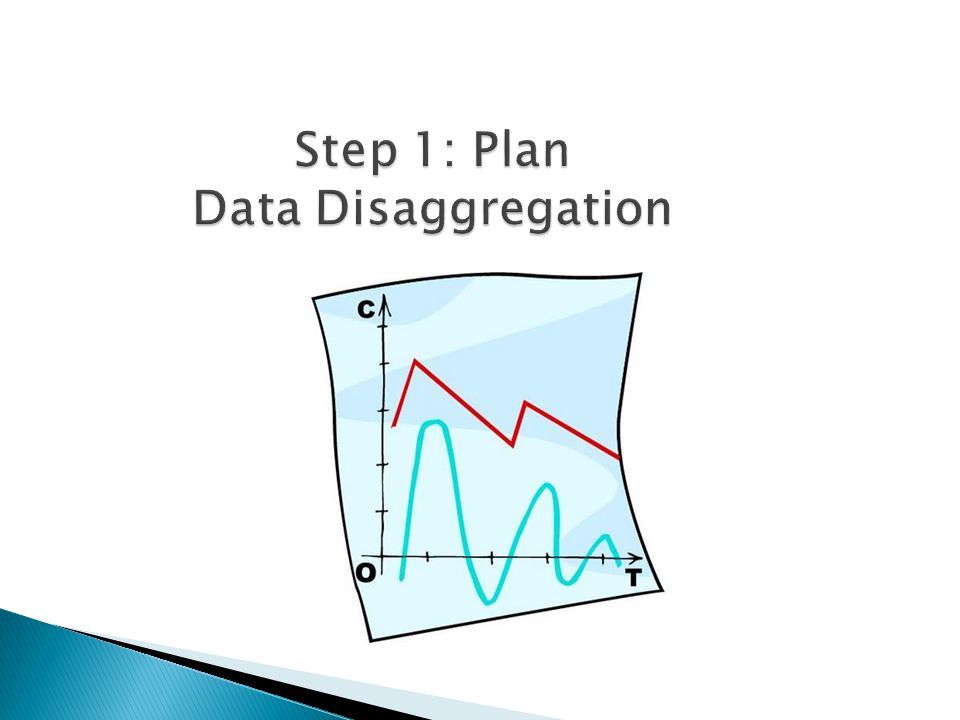 Step 1: Plan Data Disaggregation