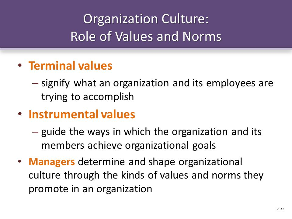 Organization Culture: Role of Values and Norms