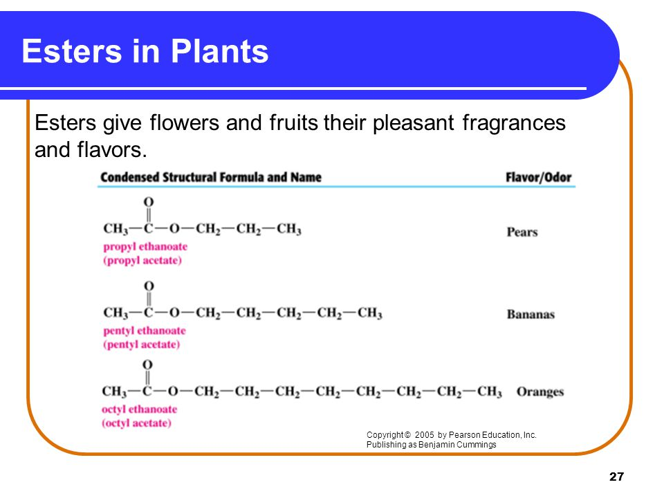 Esters in Plants Esters give flowers and fruits their pleasant fragrances and flavors. Copyright © 2005 by Pearson Education, Inc.