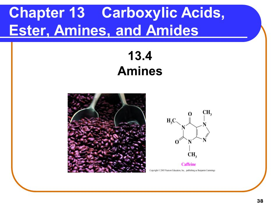 Chapter 13 Carboxylic Acids, Ester, Amines, and Amides