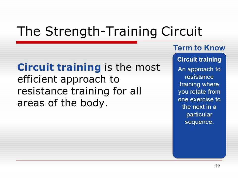 The Strength-Training Circuit