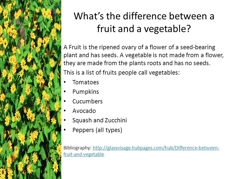what is the difference between fruits and vegetables Fruits play a major role in the reproductive cycles of their plant, whereas vegetables do not while fruits are usually sweet with bitter seeds, vegetables sometimes have just a hint of sweetness, or are absolutely bland when consumed raw.