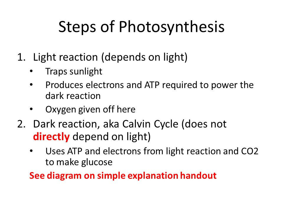 Photosynthesis diagram ks2 image collections how to guide and refrence photosynthesis diagram and explanation image collections ccuart Image collections