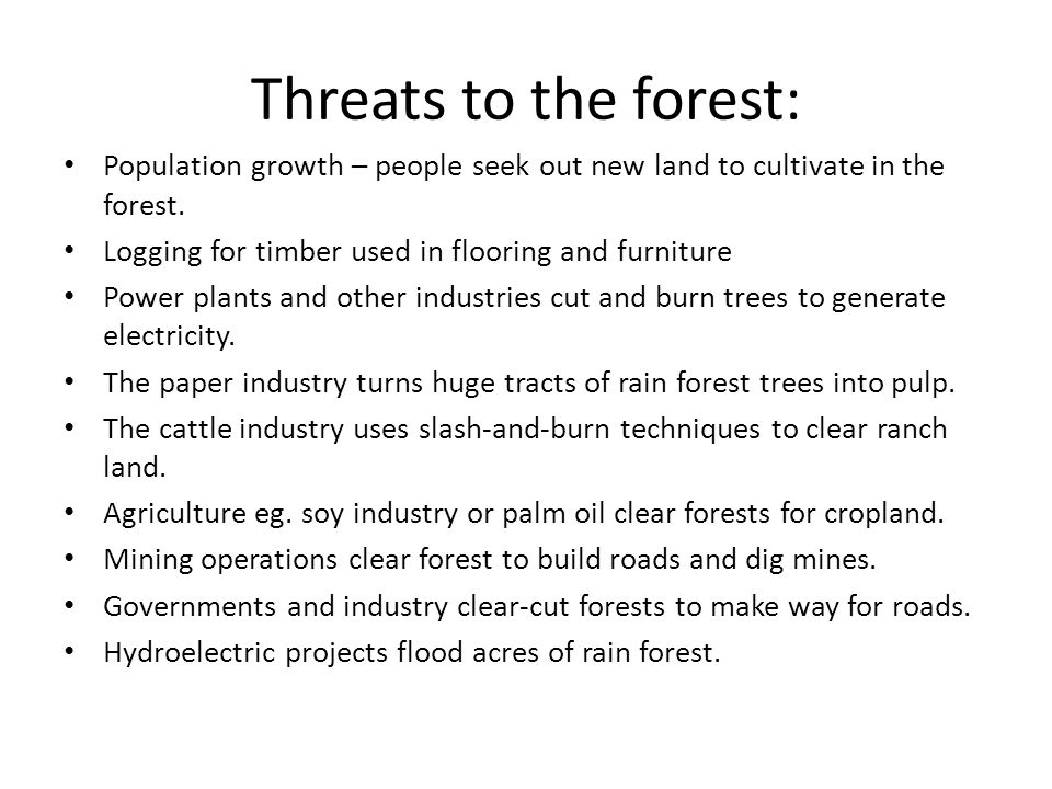 Six Benefits of Logging Forests