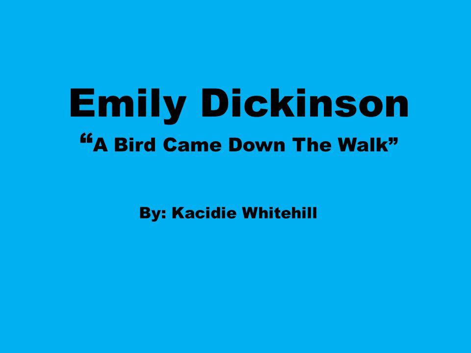 emily dickinson bird poem