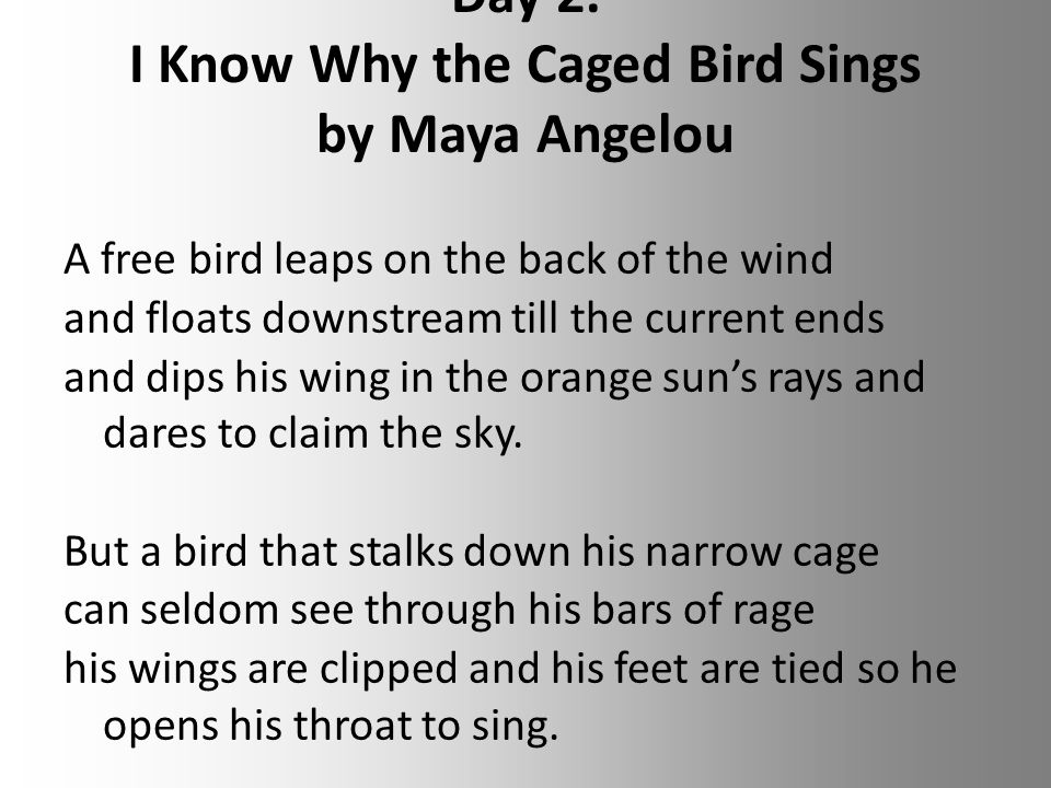 an analysis of major themes in why the caged bird sings by maya angelou Alone by maya angelou maya angelou consisting of a major in communication  i know why the caged bird sings by maya angelou.