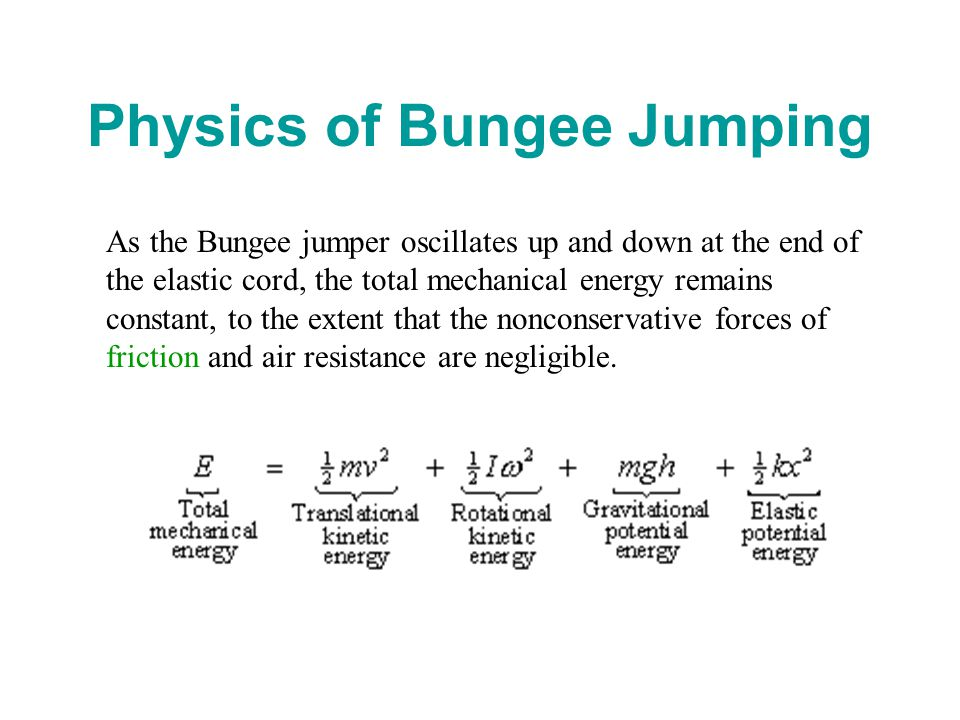physics of bungee jumping a In the bungee jumping model, a bungee jumper is dropped from a tower with a  fixed length of bungee cord  computational physics.