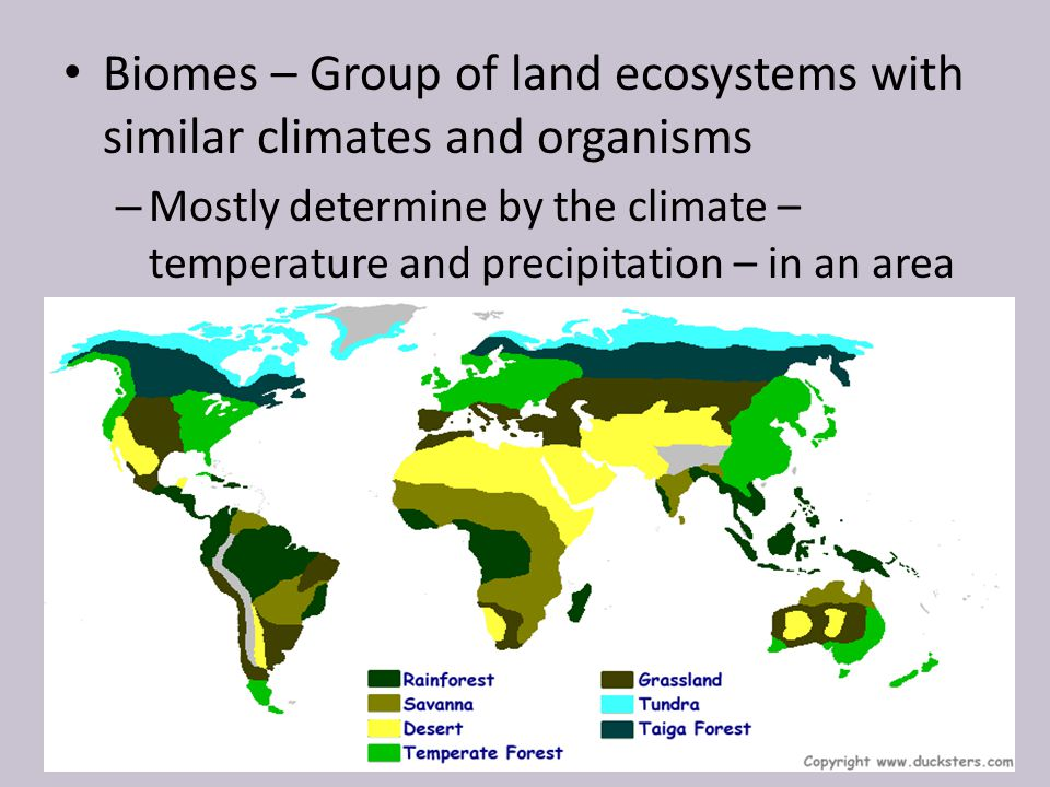 Biomes – Group of land ecosystems with similar climates and organisms