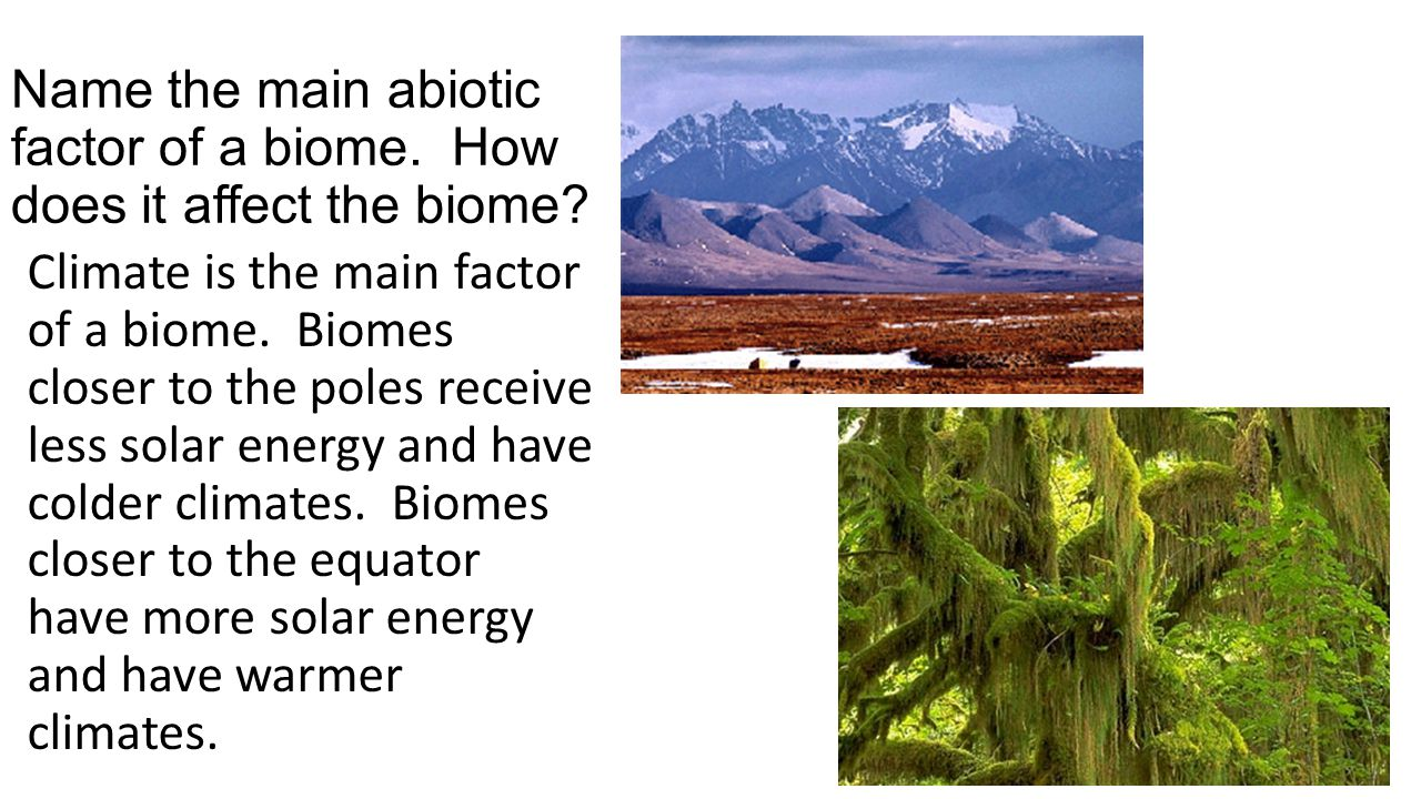 Name the main abiotic factor of a biome. How does it affect the biome