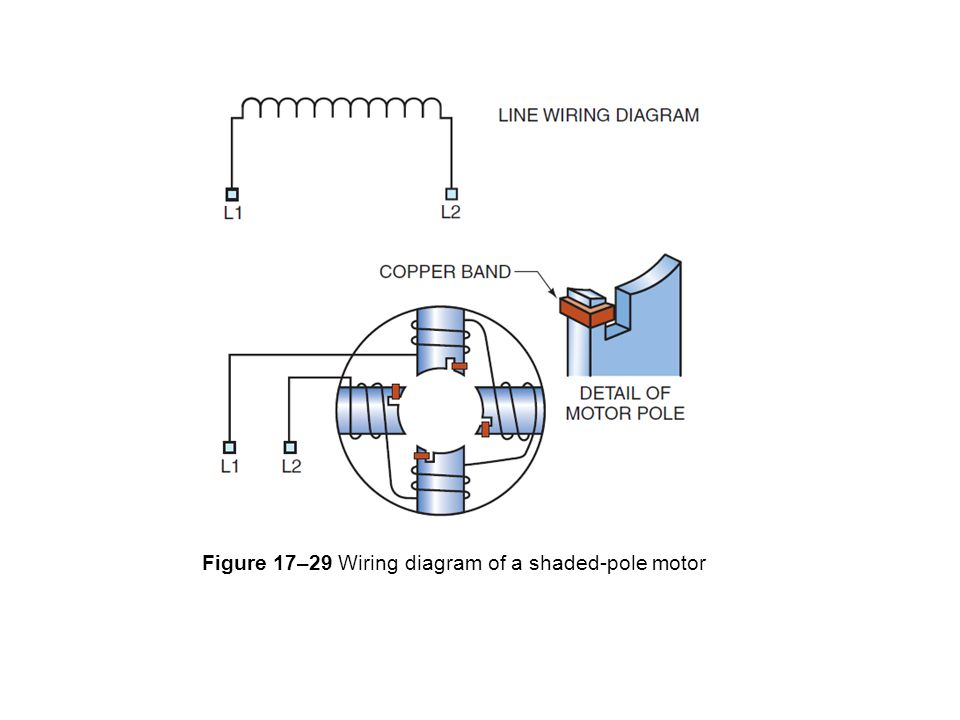 reversible shaded pole motor wiring