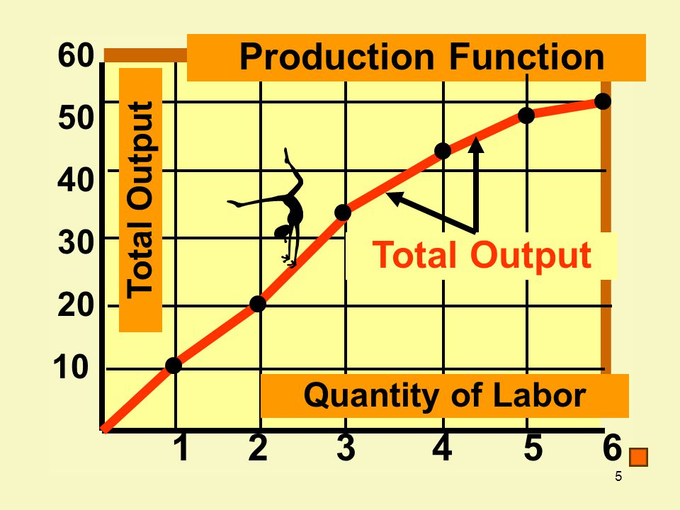 Production Function Total Output 1 2 3 4 5 6