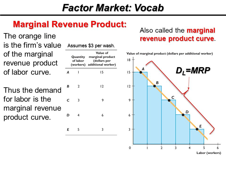 Factor Market: Vocab Marginal Revenue Product: DL=MRP