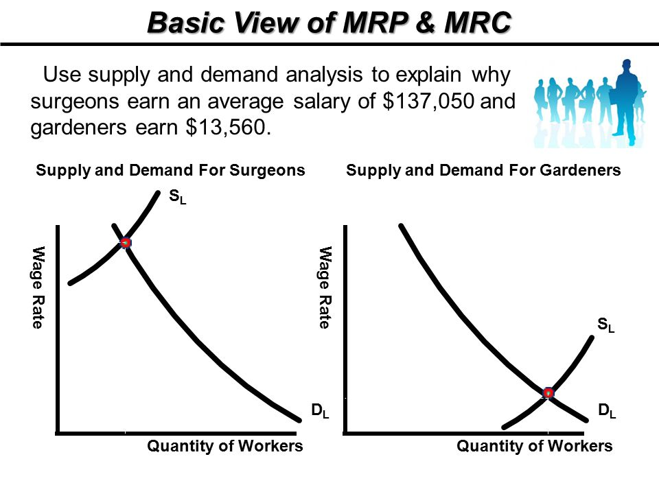 Supply and Demand For Surgeons Supply and Demand For Gardeners
