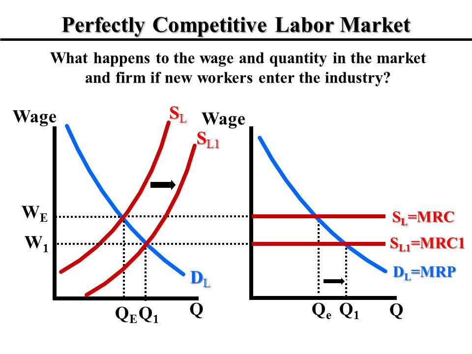 Perfectly Competitive Labor Market