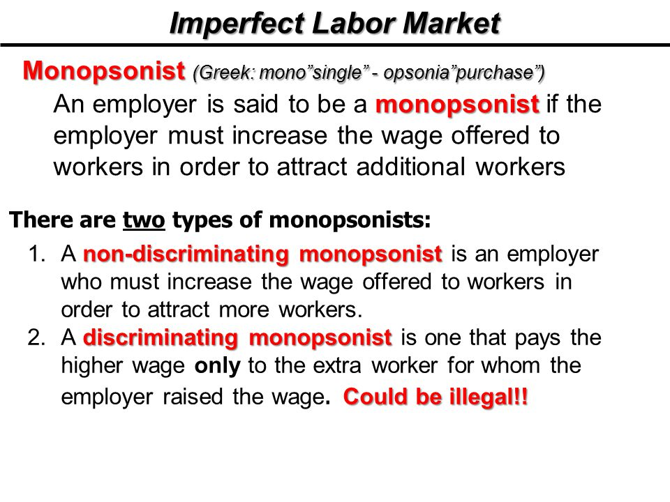 Imperfect Labor Market