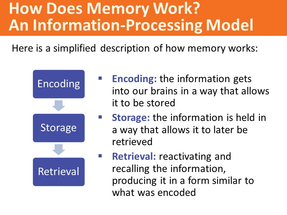 the process of encoding storing and retrieving information from our memory Memory involves encoding, storing, retaining and subsequently recalling information and past experiences  once we have the process down, it goes into our long-term memory and we can do it .
