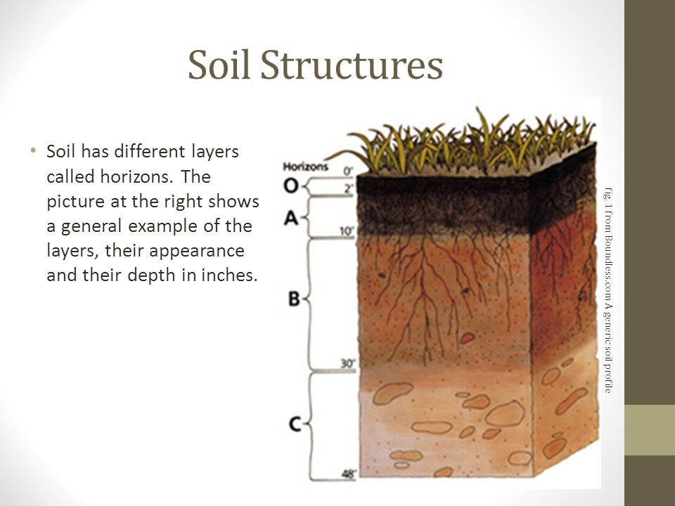 Introduction to soil types structure and pasture for Soil structure