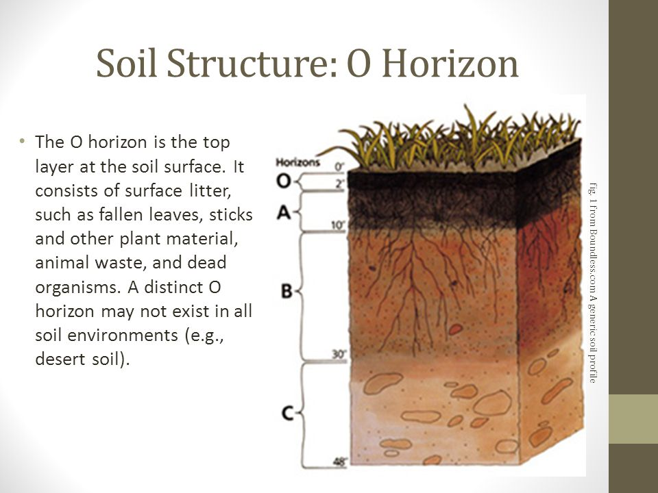 Introduction to soil types structure and pasture for Introduction of soil