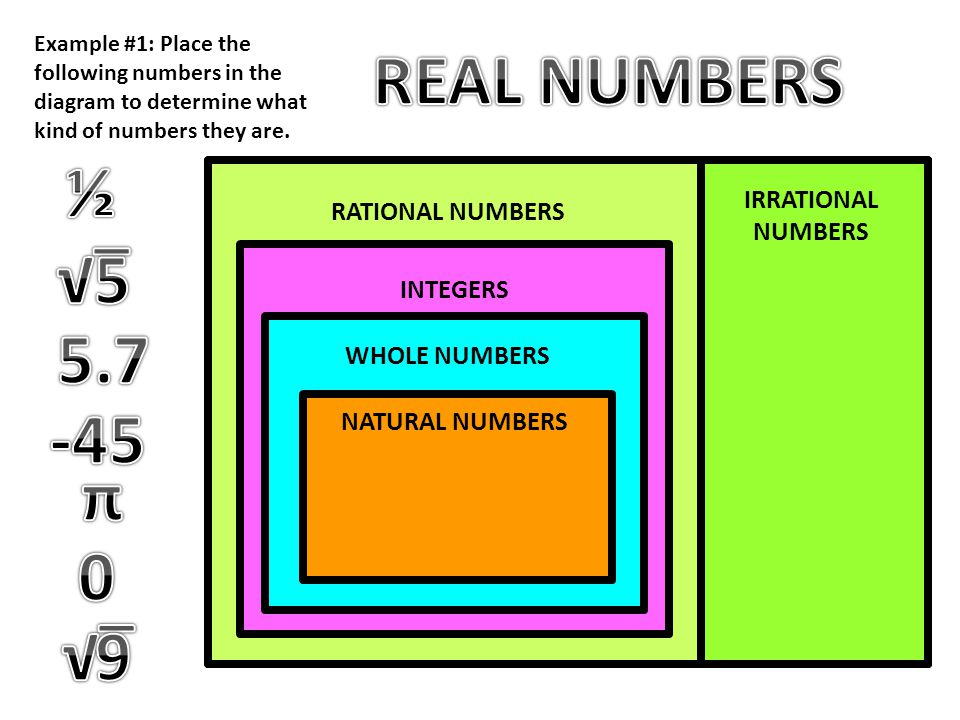 REAL NUMBERS ½ √‾ 5 5.7 -45 π √‾ 9 REAL NUMBERS IRRATIONAL NUMBERS