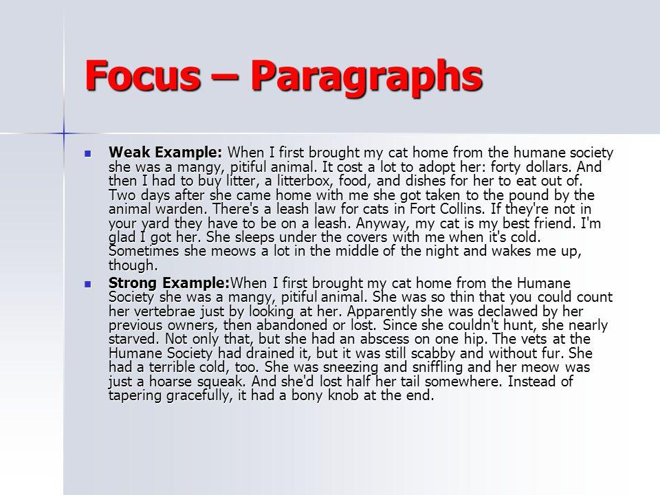 Focus – Paragraphs
