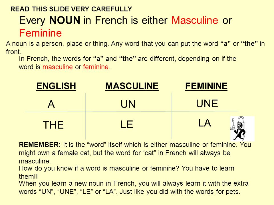 French Word of the Day - Learn a Language Online with free ...