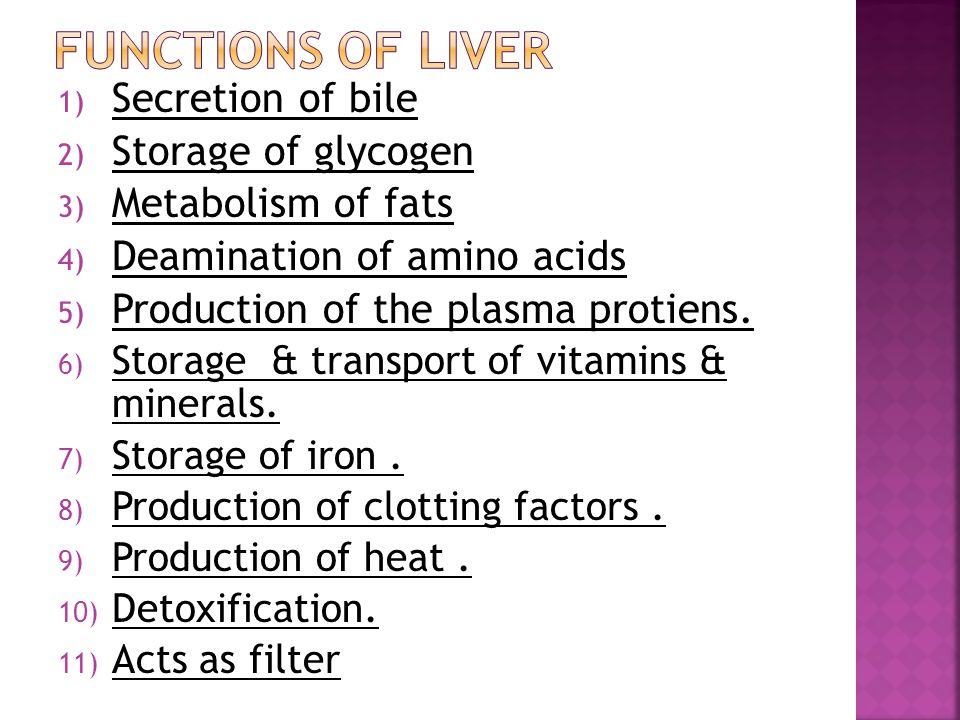 Storage Function Of Liver