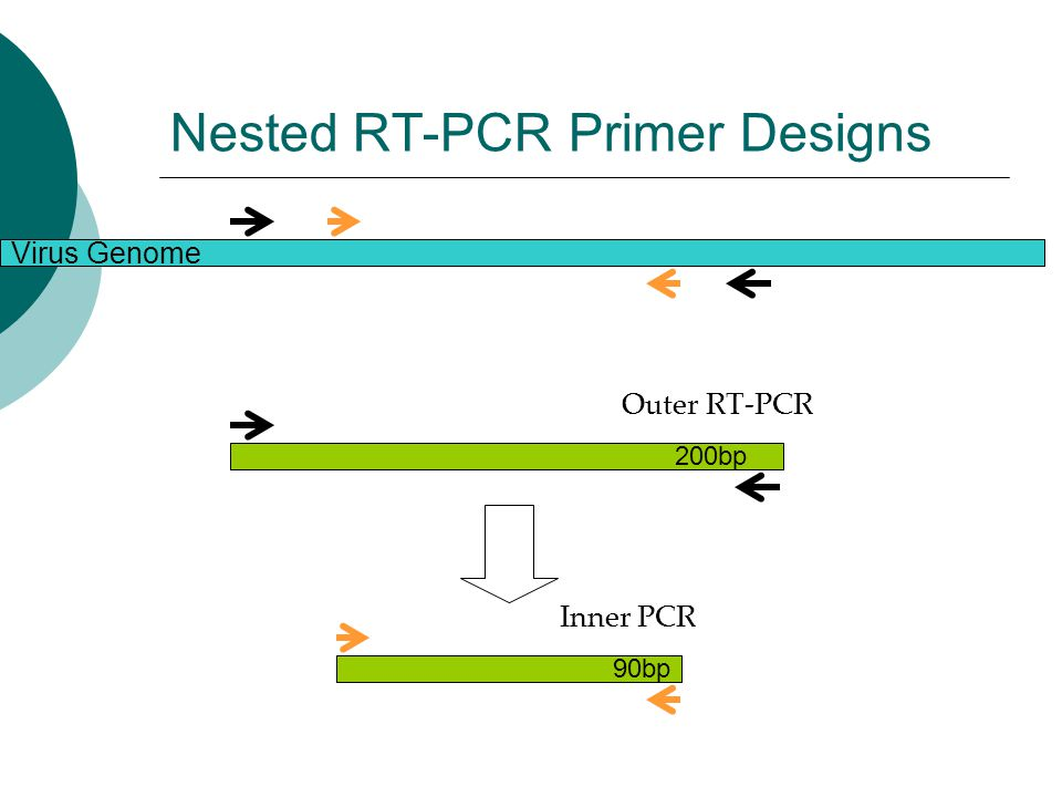 FilmArray: Automated PCR - ppt video online download