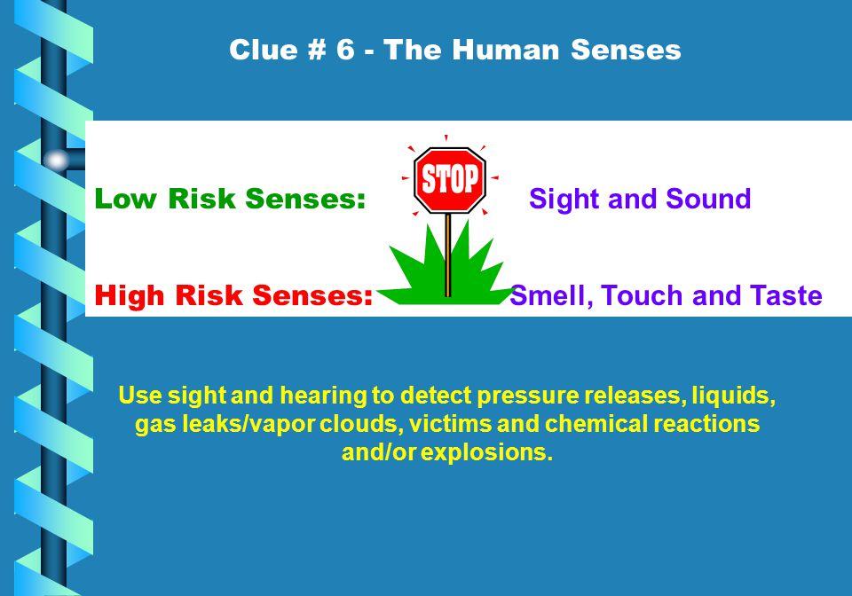 Clue # 6 - The Human Senses